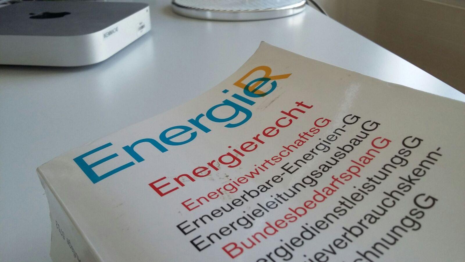 Das EEG im Instrumentenverbund des Energieumweltrechts