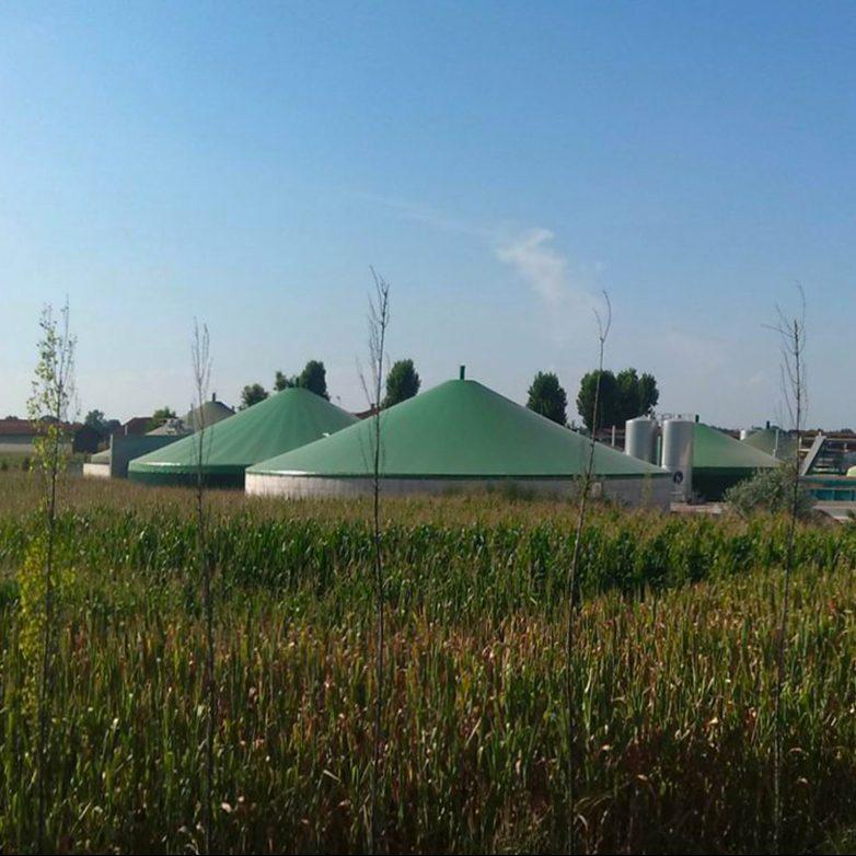 Optimale Konzepte für eine steuerbare und bedarfsorientierte Stromerzeugung aus Biogas und Biomethan