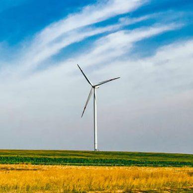 Wer macht mit bei der Energiewende? – Förderinstrumente für Strom aus erneuerbaren Energien im internationalen Überblick