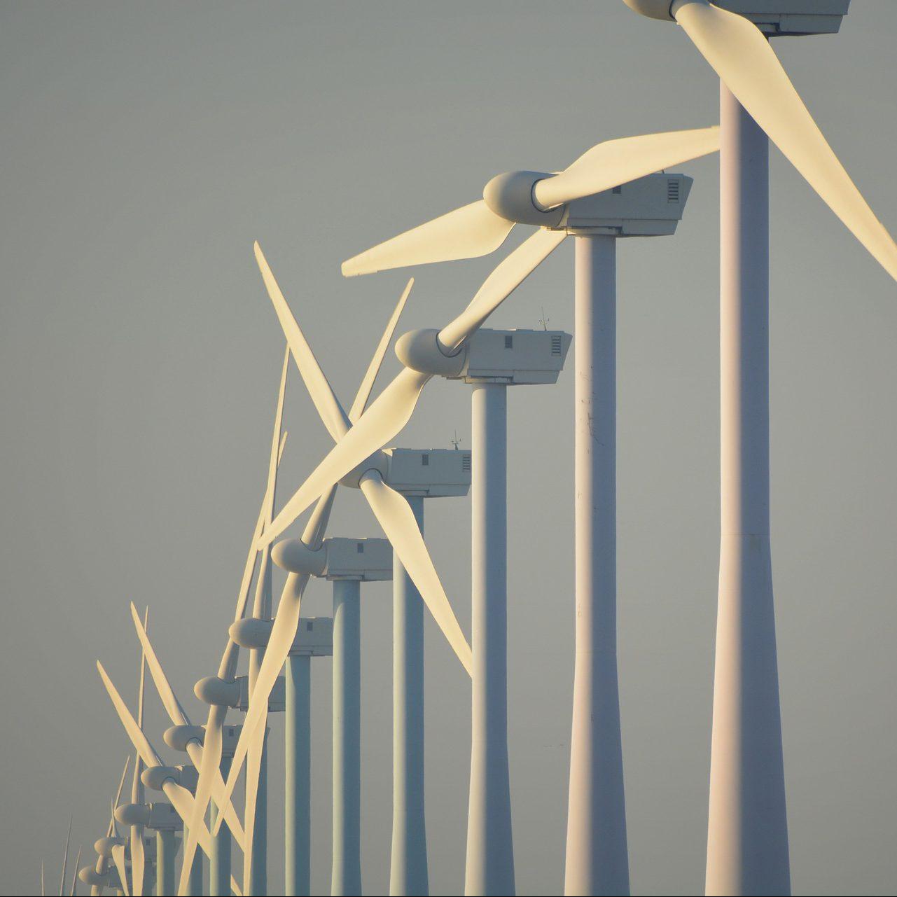 Windenergie aktuell: Beteiligungsgesetz in Mecklenburg-Vorpommern kommt