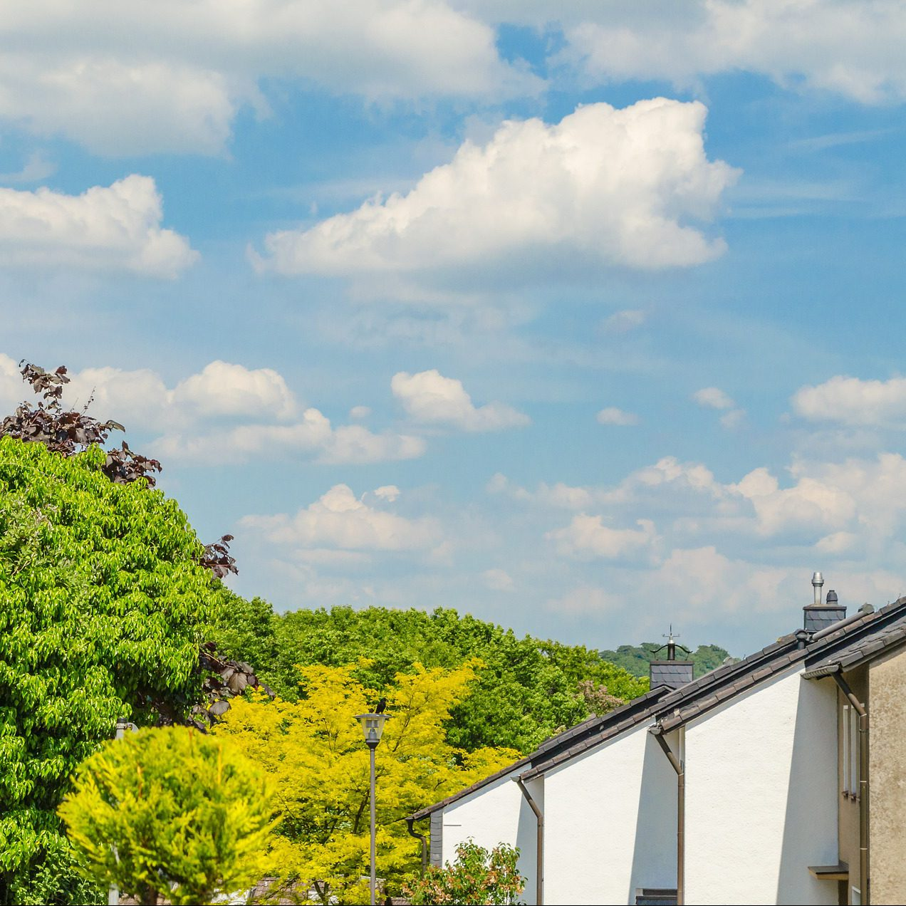 Drivers of Thermal Retrofit Decisions – A Survey of German Single- and Two-Family Houses, CPI Report