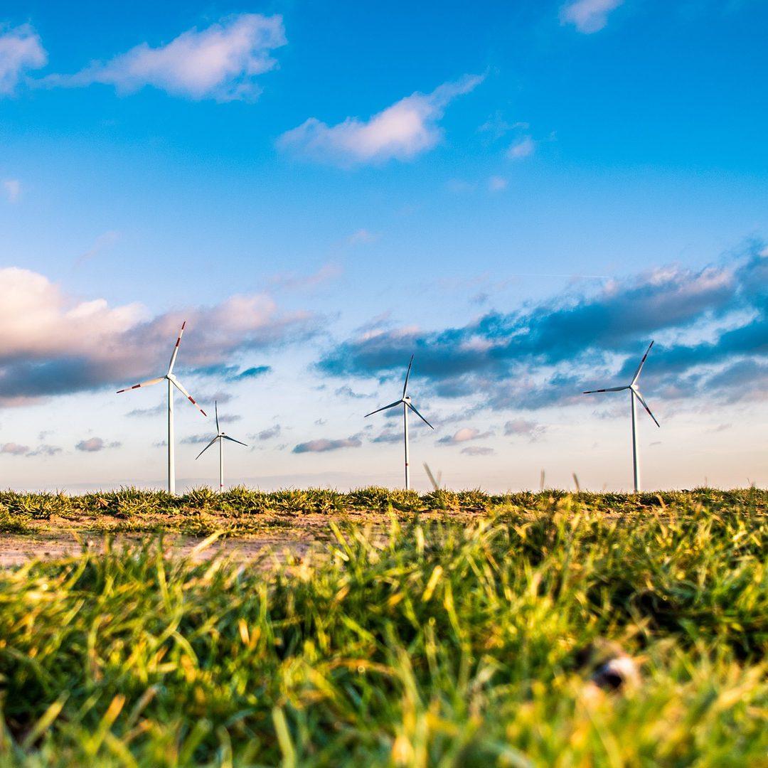 Die Ausgleichsmechanismus-Verordnung und der Ausbau Erneuerbarer Energien