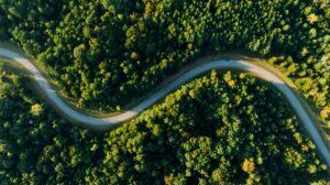 Gesetzesentwurf zum autonomen Fahren: Projektübergreifende Stellungnahme